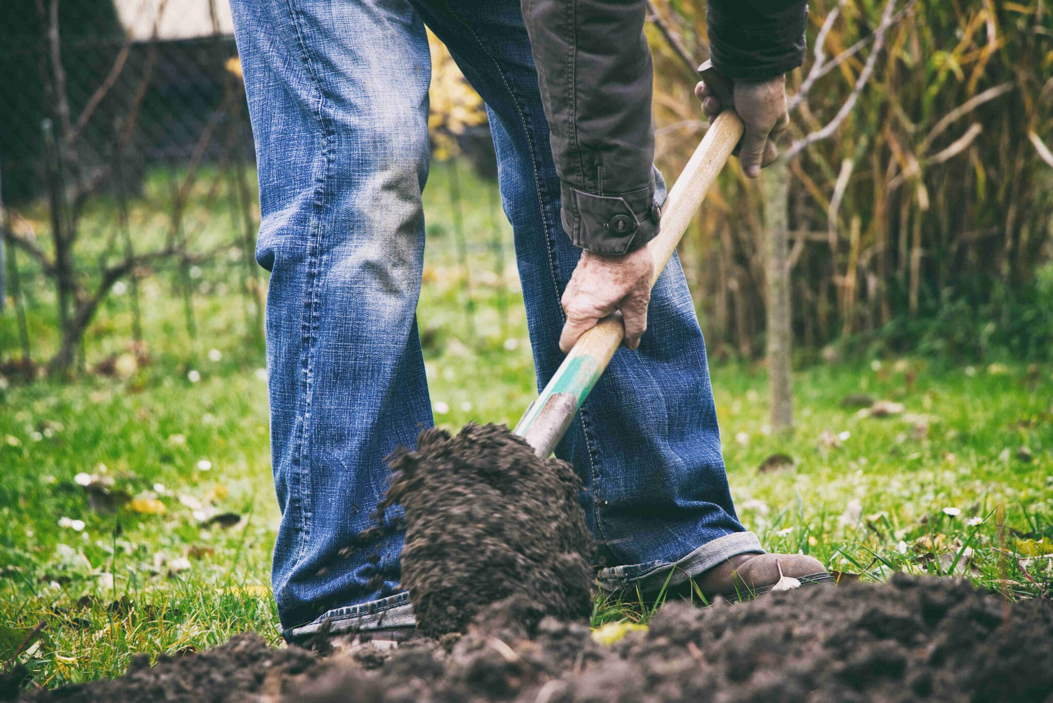 Man digging in soil, turning over garden bed, shovelling soil