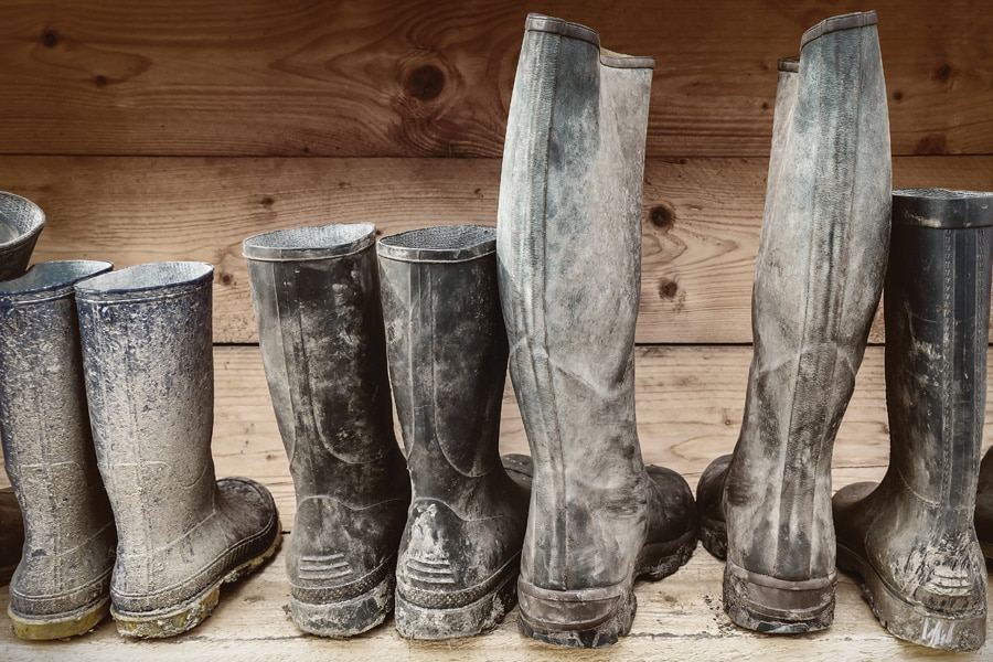 boots in a row